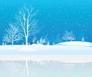 Arbres de l'hiver. Images stock