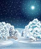 Arbres de l'hiver Photographie stock