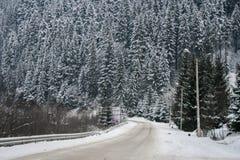Arbres de Milou de route neigeuse et de forêt d'hiver wallpaper photo stock