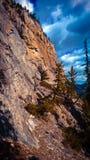 Arbres de montagnes de Bannf élevant des manières latérales Image libre de droits