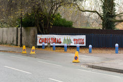 Arbres de Noël à vendre le signe Image libre de droits