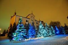 Arbres de Noël Photographie stock libre de droits