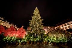 Arbres de Noël aux marchés allemands de Noël Photographie stock libre de droits