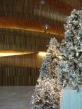 Arbres de Noël blanc Photos libres de droits