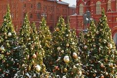 arbres de Noël couverts de neige sur la place de Manege à Moscou photographie stock libre de droits