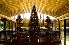 Arbres de Noël dans le centre commercial Image stock