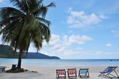 Arbres de noix de coco et chaise de plage par la mer Image stock