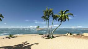Arbres de noix de coco sur une longueur abandonnée d'île banque de vidéos