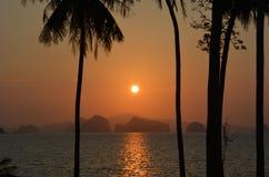 Arbres de noix de coco tropicaux de coucher du soleil d'îles de paradis Image libre de droits