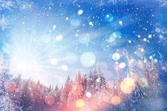 Arbres de paysage d'hiver bloqués par la neige, fond de bokeh avec le snowflak Photographie stock libre de droits