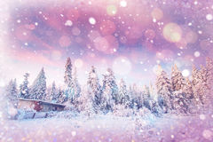 Arbres de paysage d'hiver bloqués par la neige, fond de bokeh avec le snowflak Image stock