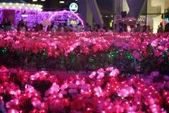Arbres de rose de décoration de Noël avec des fleurs Photographie stock libre de droits