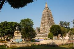 Arbres de Stupa et temple bouddhiste dans l'Inde de bodhgaya Photographie stock libre de droits