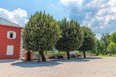 Arbres de tilleul carrés de Cetinje Dvorski vieux Images stock
