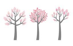 Arbres de vecteur avec des branches et des feuilles de rose Photo libre de droits