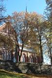 Arbres de ville à l'arrière-plan en retard d'automne Image libre de droits