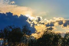 Arbres dramatiques de nuages de lumière du soleil de ciel de fond silhouettés images stock
