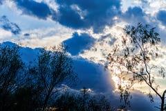 Arbres dramatiques de nuages de lumière du soleil de ciel de fond silhouettés Photographie stock
