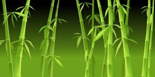 Arbres en bambou chinois Photo stock