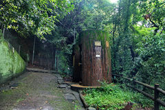 2 arbres en forme de toilettes de bois de construction chez Nunibiki se garent, Kobe, Japon Image stock