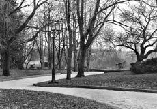 Arbres en parc en automne image stock