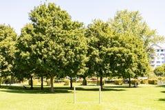 Arbres en parc avec le chemin Images stock