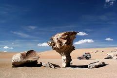 Arbres en pierre dans le désert Images libres de droits