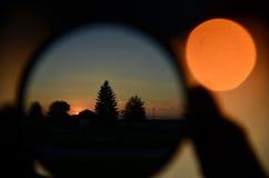 Arbres et bokeh avec le soleil Photo libre de droits