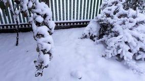 Arbres et buissons d'hiver fortement répandus avec la neige profonde Hiver russe givré de neige images libres de droits