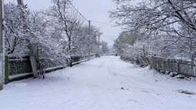 Arbres et buissons d'hiver fortement répandus avec la neige profonde Hiver russe givré de neige photo stock
