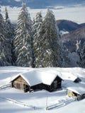Arbres et buissons d'hiver fortement répandus avec la neige profonde Hiver russe givré de neige photos libres de droits