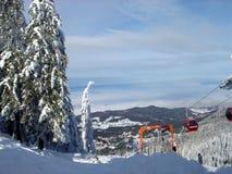 Arbres et buissons d'hiver fortement répandus avec la neige profonde Hiver russe givré de neige image libre de droits