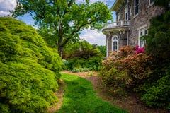 Arbres et buissons derrière le manoir de Cylburn à l'arborétum de Cylburn Photographie stock libre de droits