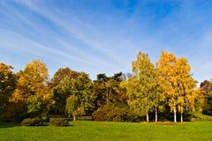 Arbres et ciel d'automne Photographie stock libre de droits