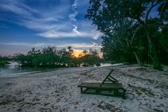 Arbres et coucher du soleil de palétuvier photographie stock