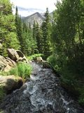 Arbres et courant en Rocky Mountain National Park Photographie stock