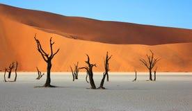 Arbres et dunes de sable morts chez Deadvlei Namibie photographie stock