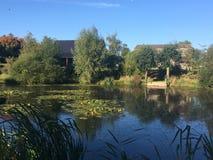 Arbres et ferme près de lac près de Coggeshall dans Essex Photos stock