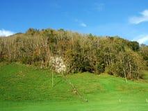 Arbres et forêts à feuilles caduques dans l'automne tôt dans la gamme de montagne d'Alpstein et dans la région d'Appenzellerl images stock