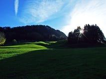 Arbres et forêts de mélanges dans la gamme de montagne d'Alpstein et dans la région d'Appenzellerland photos stock