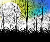 Arbres et herbe Photos libres de droits