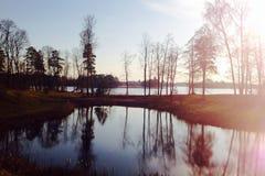 Arbres et lac photos libres de droits