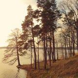 Arbres et lac photographie stock libre de droits