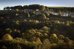 Arbres et maisons supérieurs de colline Photo libre de droits