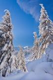 Arbres et montagnes de Milou Photo libre de droits