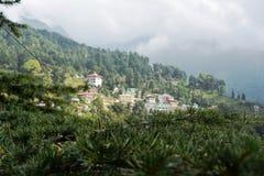 Arbres et montagnes des vallées images stock