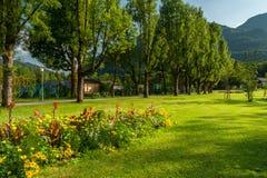 Arbres et pré de lit de fleur en parc en été Photos stock