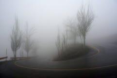 Arbres et route en brouillard épais Photographie stock libre de droits