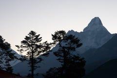 Arbres et silhouettes de montagne au lever de soleil Photos stock