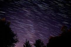 Arbres et traînées d'étoile Photos libres de droits